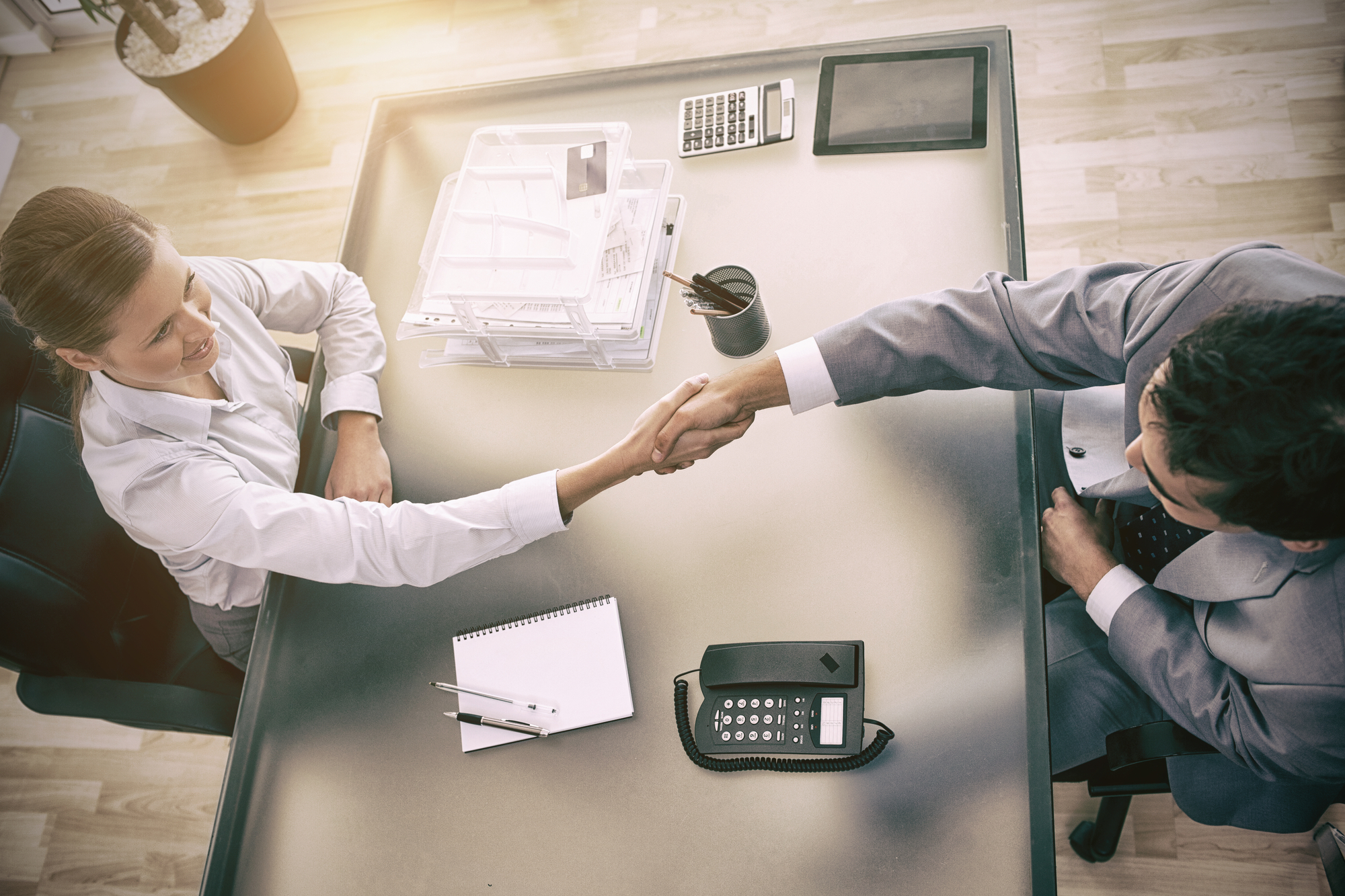 Consultant shaking hands with customer