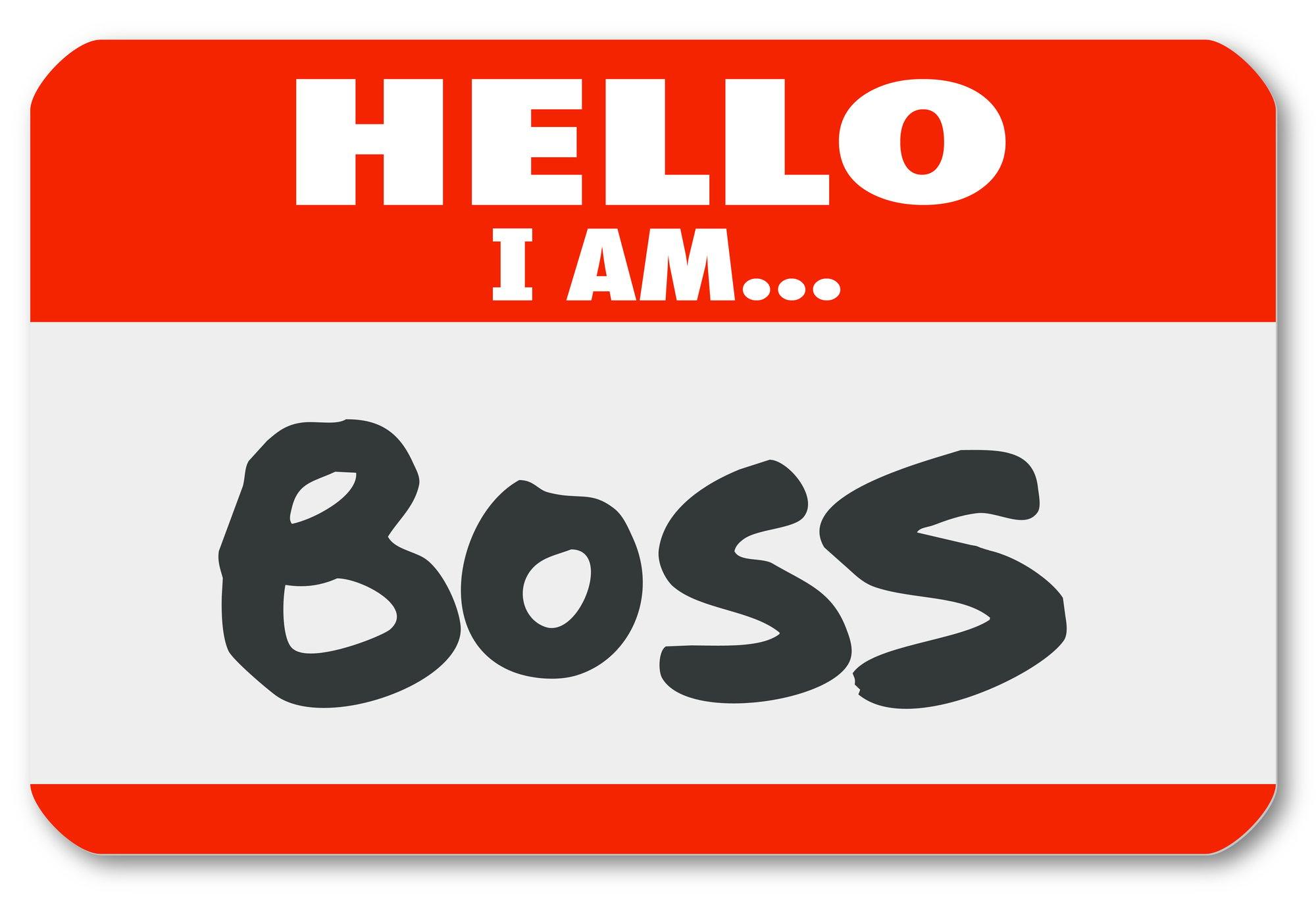 Hello I Am Boss Nametag Sticker Supervisor Authority